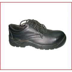 RYDERS - SAFETY SHOES ( T/S/SSS/RYD/XXX/001 )
